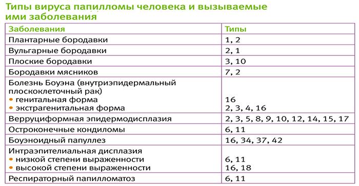 Разновидности папилломы человека 41