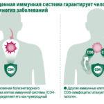Как поднять иммунитет при ВПЧ