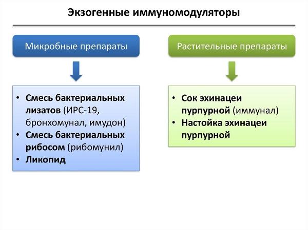 экзогенные иммуномодуляторы